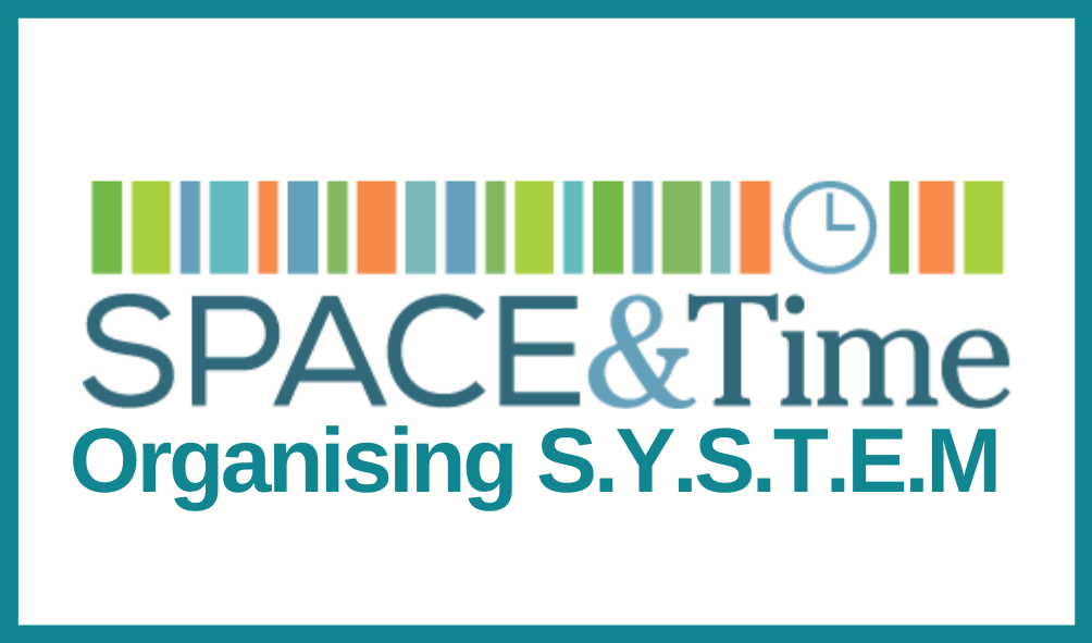 Space and Time Organising System logo